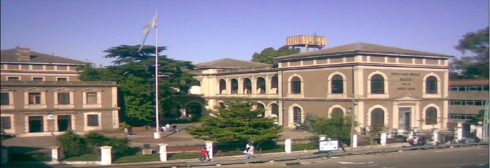 Escuela Soleada